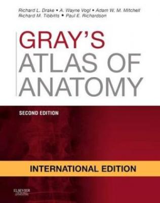 Grays Atlas Of Anatomy 2Ed Ie (Pb 2015)