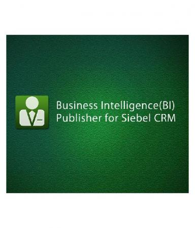 Business Intelligence (bi) Publisher For Siebel CRM