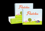 Flintobox 6 Month Subscription For Age 3-4 Years